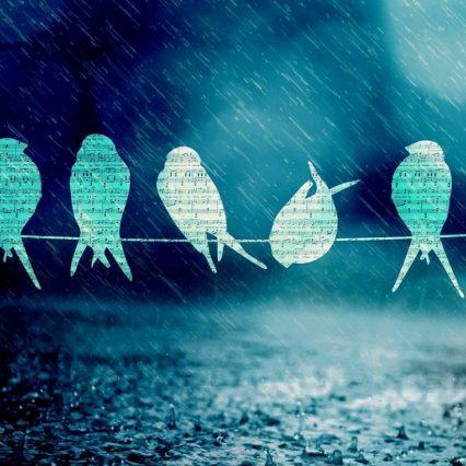 【もうすぐ梅雨の季節】雨の日に聴きたい曲は?(男性歌手編)