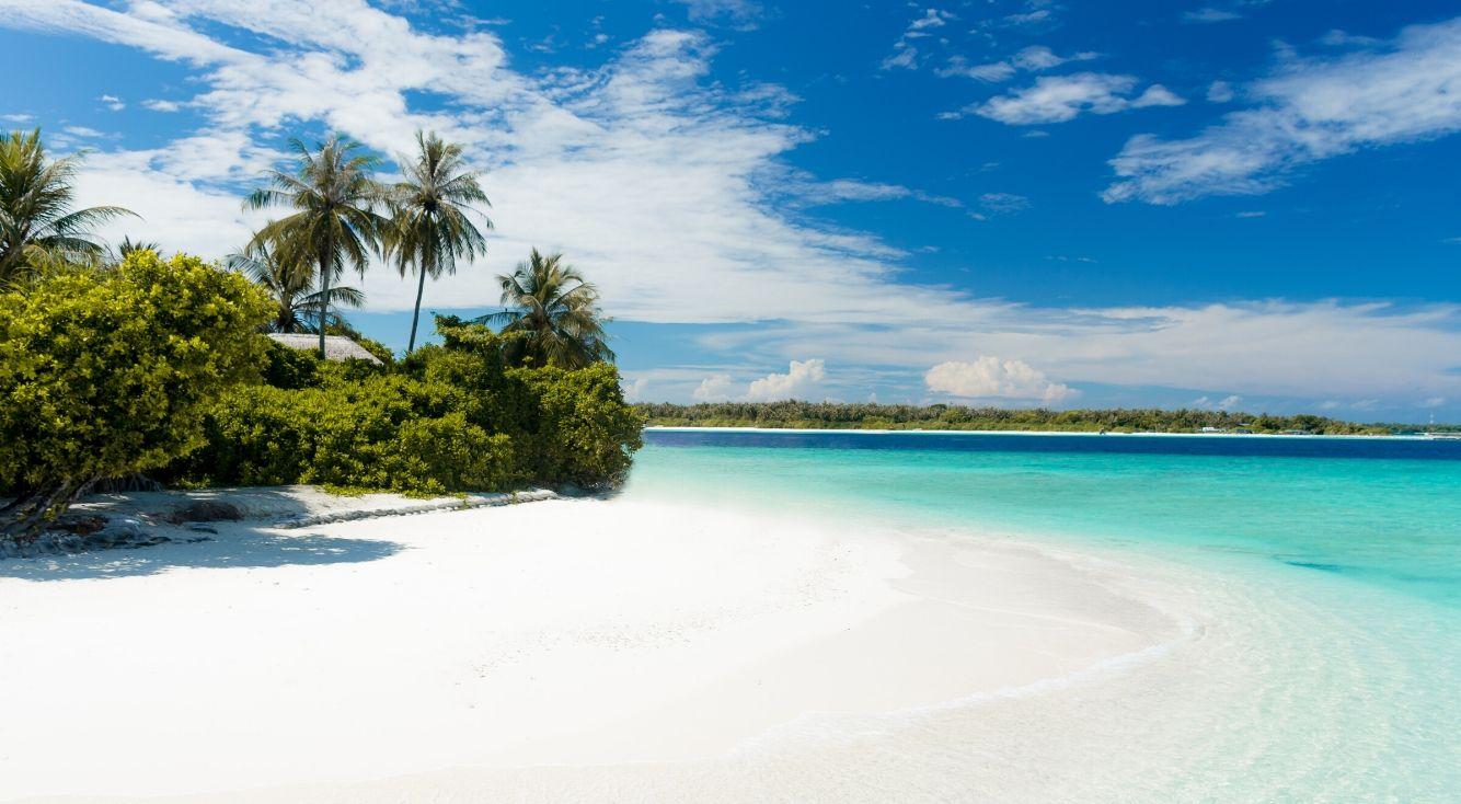 無人島に連れて行きたいジャニーズグループランキング